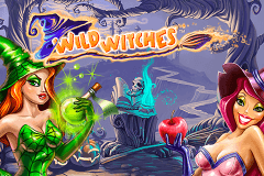 logo wild witches netent hry automaty